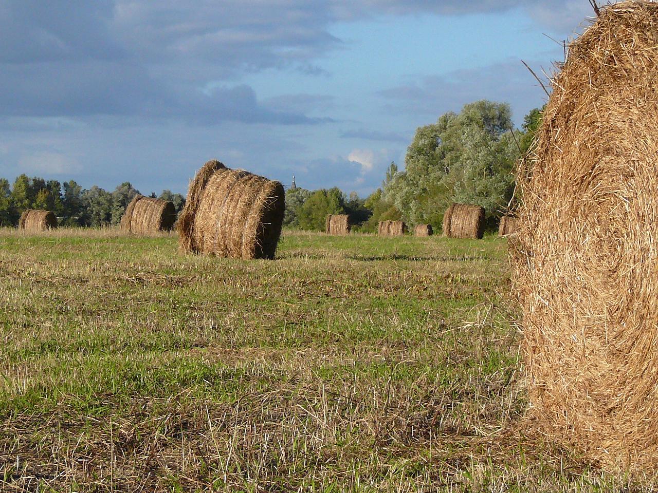 Recensement agricole m t o et ouverture des fen tres for Mondiale fenetre